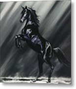 Dark Splendor Metal Print by Kim McElroy