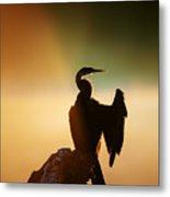 Darter Bird With Misty Sunrise Metal Print