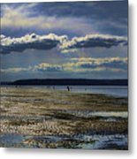 Dash Point State Park 2 Metal Print