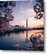 Dawn Blossoms Metal Print