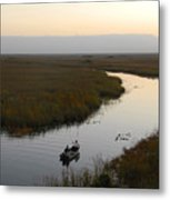 Dawn Everglades Florida Metal Print