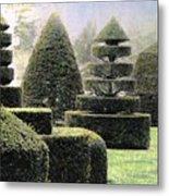 Dawn In A Topiary Garden   Metal Print