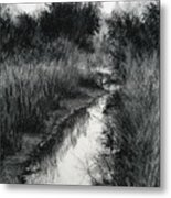 Dawn Marsh Metal Print