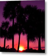 Dawn Of Another Perfect Day Metal Print