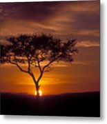 Dawn On The Masai Mara Metal Print