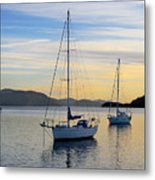 Dawn Picton New Zealand Metal Print by Barry Culling