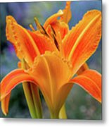 Day Lily Bright Metal Print