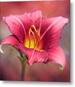 Day Lily Deep Metal Print
