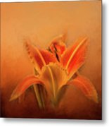 Day Lily Emerging Metal Print