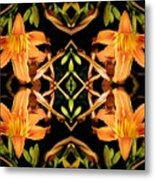 Day Lily Square Dance Metal Print