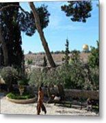 Day Walk In Jerusalem Metal Print