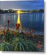 Daybreak And Cloudy Seascape And Aloe Vera Metal Print
