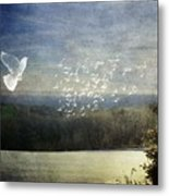 Daybreak At Cedar Hill Metal Print