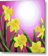 Daybreak Daffodils Metal Print