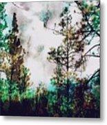 Daydreamer  Metal Print