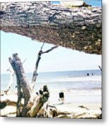 Daydreams and Driftwood Metal Print
