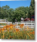 Daylilies And Oxen Wagon Metal Print