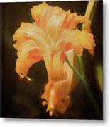 Daylily Dream Metal Print