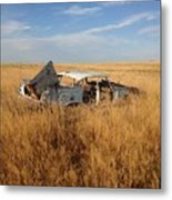 Day's Gone By  Metal Print