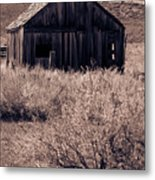 Days Long Gone Metal Print