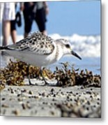 Daytona Beach Surf 001 Metal Print