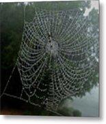 Db6325-dc Spiderweb On Sonoma Mountain Metal Print