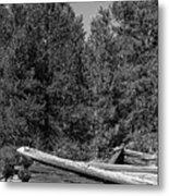 Ddp Djd B And W 1880's Cabin Ruins In Montana 3 Metal Print