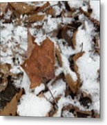 Dead Leaves In The Snow Metal Print