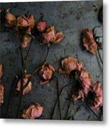 Dead Roses 6 - Photo Metal Print