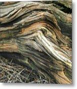 Dead Tree Textures Metal Print