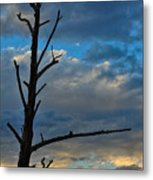 Dead With Color Metal Print