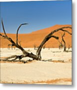 Deadvlei With Tree Metal Print