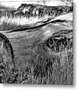 Deadwood On Cherry Creek Trail 2 Metal Print