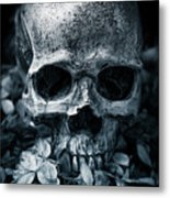 Death Comes To Us All Metal Print