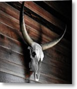 Death Of A Longhorn Metal Print