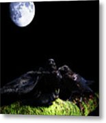 Death Of A Young Raven Metal Print