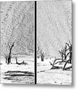 Death Valley - Namibia Metal Print