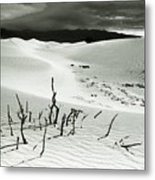 Death Valley Brush Metal Print