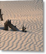 Death Valley Morning Metal Print by Sandra Bronstein