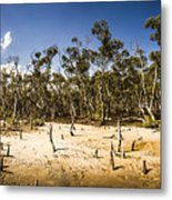 Deception Bay Conservation Park Metal Print