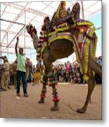 Decorated Camel Pushkar Metal Print