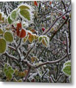 Decorated With Leaves Metal Print