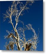 Deep Blue White Tree Metal Print