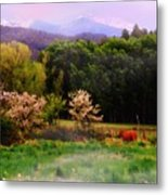 Deep Breath Of Spring El Valle New Mexico Metal Print