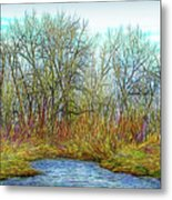 Deep Forest River Metal Print