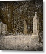 Deep Sleep Metal Print