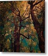 Deep Trees Metal Print