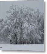 Deep Winter Metal Print
