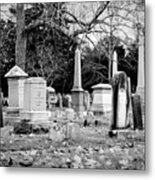 Deep Within Evergreen Cemetery Metal Print