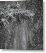 Deep Woods Snow Metal Print